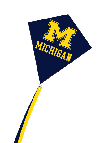 Buy a college paper online kites